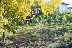 селски имот с.Вардим